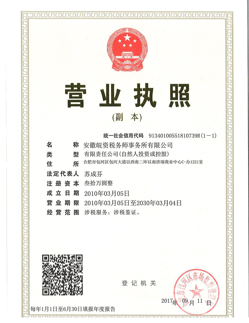 安徽皖资营业执照