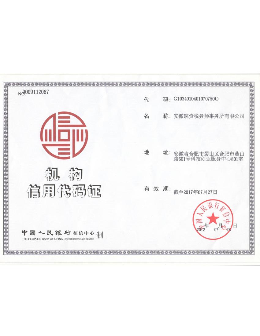 安徽皖资组织机构代码证